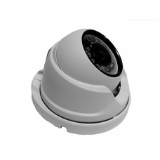 Mini Dome IP 2Mpx ottica 3.6mm
